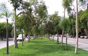 Actividades al aire libre en Guadalajara