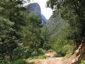 Parque Nacional Cumbres en Monterrey