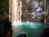 Buceo al gran Arrecife Maya