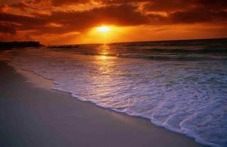 Tours y Excursiones en Playa del Carmen