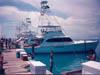 Crucero Sandra Lynn