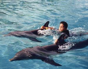 Nado con Delfines en Puerto Aventuras