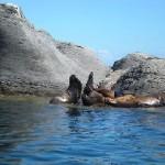 Bahia de Loreto