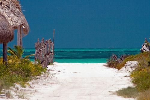 estando-en-cancun-visite-isla-holbox.jpg