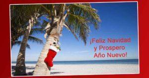 Prepara tus Vacaciones para Navidad y Año Nuevo