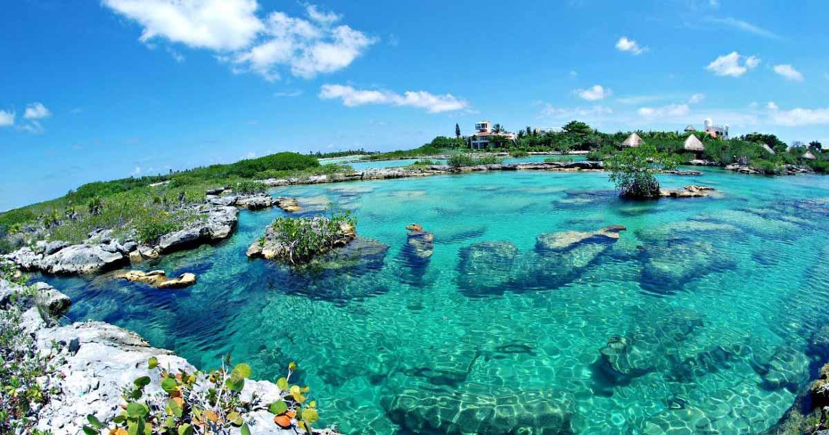 Cenotes en Playa del Carmen Riviera Maya
